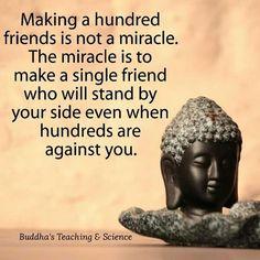 Buddha's Teachings...