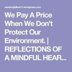 We Pay A Price When We Don't Protect Our Environment. | REFLECTIONS OF A MINDFUL HEART  AND SOUL
