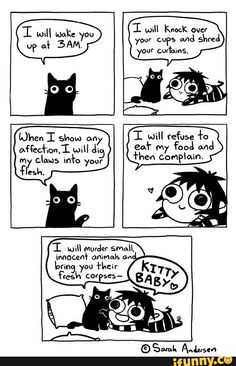 Today on Sarah's Scribbles - Comics by Sarah Andersen Funny Shit, Funny Cute, Hilarious, Cat Comics, Funny Comics, Saras Scribbles, Sarah Anderson Comics, Cat Memes, Funny Memes