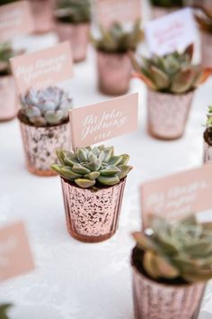 succulent wedding favors stemless plastic wine glass BUDGET FRIENDLY wedding favors cactus wedding favors wedding wine glass