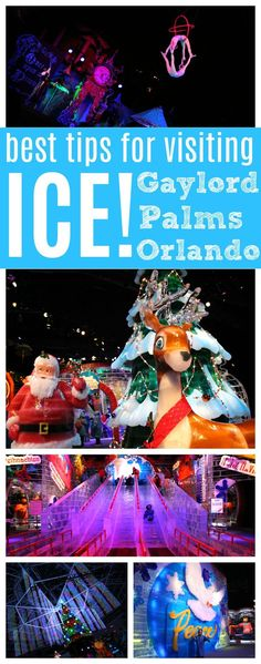 Best Tips for Visiting Gaylord Palms ICE! Orlando, Florida with your family - Raising Whasians (AD)