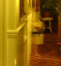 San Remo Hotel Ghost PhotoThis pic comes from the San Remo Hotel in San Francisco, CA. Though a number of ghosts reportedly haunt the property, Room was home to an elderly woman who. Scary Ghost Pictures, Ghost Images, Ghost Photos, Creepy Pics, Real Haunted Houses, Haunted Places, Haunted Hotel, Ghost Caught On Camera, Spirit Ghost