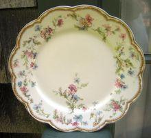 set of 12 beautiful antique plates of t v tressemann. Black Bedroom Furniture Sets. Home Design Ideas