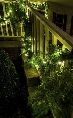 You bet! Holiday Christmas lighting at its finest! Outdoor Christmas Garland, Christmas Lights, Christmas Holidays, Favorite Holiday, Garden Bridge, Outdoor Structures, Traditional, Lighting, Live