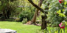 Self Catering in Llanbedr | log fire and large garden with BBQ | Holiday Cottages North Wales | Self Catering Snowdonia
