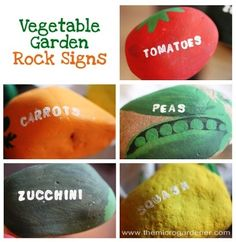 Vegetable Garden Rocks. Cute project to do with kids.