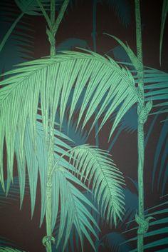 palm leaf wallpaper // Spotti StudioPepe #green #jungle #wallpaper
