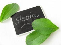 Lo que dice la ciencia para adelgazar de forma fácil y saludable: Especial edulcorantes (II) - Sacarina, ciclamato, sucralosa, stevia ¿son seguros?