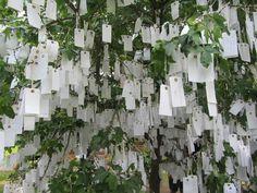 Wish tree - Lousiana Kopenhagen
