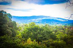 mountain view osa palmas canopy tour  Las Palmas, near Puerto Jimenez Osa Peninsula #fun #zipline #costarica