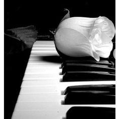 Color Negro y Blanco - Black & White! Black And White Love, Black And White Pictures, White Art, White White, Love Photography, Black And White Photography, People Photography, Musician Photography, Fotografia Social