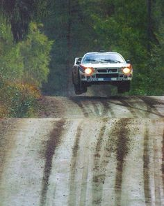 ☀️ RISE AND SHINE  The Lancia 037 bunnyhopping  in his natural habitat, the forest.  #nature #lancia #martiniracing #petrocamp
