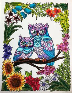 Blissful Scenes Illustrated By Hasby Mubarok Bear Coloring Pages, Coloring Book Art, Doodle Coloring, Mandala Coloring, Colouring, Colorful Drawings, Art Drawings, Owl Quilt Pattern, Beautiful Flower Drawings