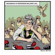 Oh, god, not another pidgey!