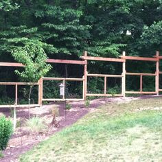 Our deer-proof fence