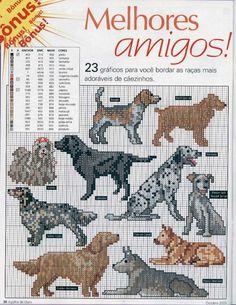 Los 3 Artes: Animales domésticos especiales - Perros (01)