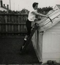 Painting the roof on the tent, Sussex Street West Coburg ~ circa 1960.