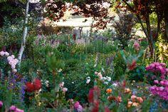 8 stunning spring gardens image 6