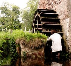 """Jamie at the millpond -""""oh, cack"""" means oh, sh#t! I think the water might be a wee bit cold..."""