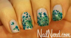 Dried Lace Flowers Nails ~ China Glaze: Light As Air with real dried flowers placed on top, followed with a clear top coat