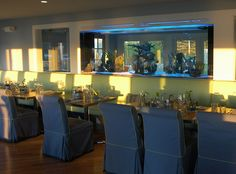 Come join us at the bar at Stripers Waterside Restaurant in the Breakwater Inn in Local Seafood, Seafood Dishes, Kennebunk Port, Kennebunkport Maine, Beautiful Sunset, New England, Join, Restaurant, Bar