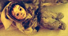 7 Extremely Well Preserved Mummies Who Look Like They're Still Alive