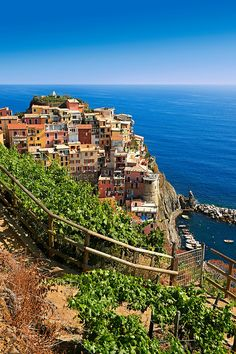 Photo of the fishing port of Manarola, Cinque Terre National Park, #Liguria, #Italy