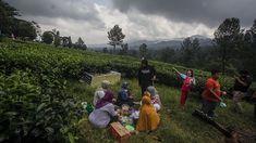 Hore Berikut 5 Tempat Wisata di Puncak Bogor yang Sudah Buka  #BogorChannel