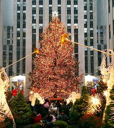 rockefeller new york city | Photo of Rockefeller Center Christmas Tree, New York City - so excited to go see it this year!! It's been a dream of mine!!!:) one item off the good ol' bucket list!!!