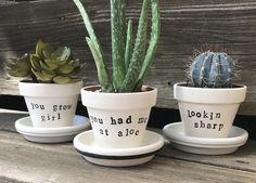 Funny succulent flower pot by Dorm U on Etsy/ succulents/ punny plant/ plant . - Funny succulent flower pot by Dorm U on Etsy/ succulents/ punny plant/ plant pun/ funny/ gift - Easy Diy Mother's Day Gifts, Diy Mothers Day Gifts, Mother's Day Diy, Diy Gifts, Succulent Pots, Planting Succulents, Planting Flowers, Flowering Plants, Painted Flower Pots