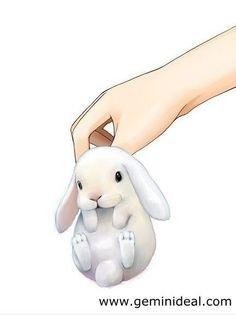 Wallpaper Super Cute Kawaii Pet Love Dwarf Bunny Rabbit A R T