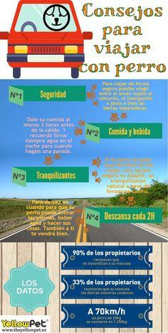 Viajar con perro puede ser divertido. Pero tienes que estar preparado.  www.theyellowpet.es