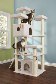 You+&+Me+Cat+Tree,+X-Large+-+Encourage+your+kitty's+natural+urge+to+explore+and+climb+with+the+You+&+Me+Cat+Tree.+Made+with+multi-pet+households+in+mind,+this+cat+furniture+features+two+toys+and+carious+fleece-covered+landings+and+hideaways. - http://www.petco.com/shop/en/petcostore/product/you-and-me-cat-tree-x-large