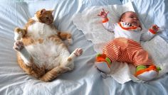 from The 25 Most Awkward Cat Sleeping Positions I love this cat amd baby - so cute and funny