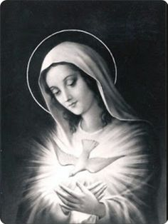 Our Lady of the light spouse of the Holy spirit,  obtain o obtain for me the grace of an intimate Union with Jesus.