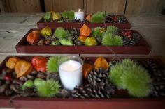 Gezellig herfst stukje, voor op tafel,met materialen van eigen erf!