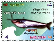 Catfish Stamp = Ompok pabda