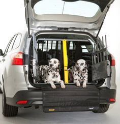 a726f653094c Variocage Double - Mighty Mite Dog Gear On Sale Double Dog Crate, Dog Car  Accessories