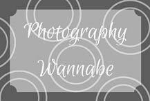 Photography Wannabe - Tips, props, and tricks for an amateur photographer to take great pictures at home! Kids, family, art, business... these ideas will help out. By MTBottles.ca