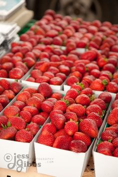 there are so many strawberries