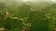 Abandoned Chinese village swallowed by vines. The area was once known as a fisherman's village.