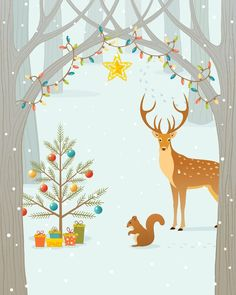 Gartenzauber | Die Geschichte des Weihnachtsbaumes - Gartenzauber