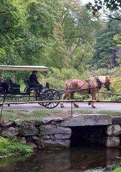 There are many weddings at the Wayside Inn and wedding photos taken at the grist mill. The lucky couple can hire a horse and buggy to go from the inn to the grist mill and Martha Mary chapel down the street. When there's enough snow, they can hire a sleigh.