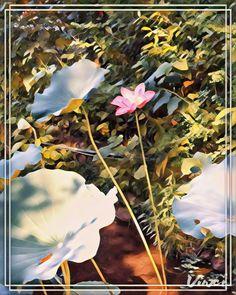 # Edtaonisl 36/38 🎨🌈 @Vinci.cam ~ x 38*+%+sizes Trendy Filters for quick photo Editing using Artificial Intelligence. #Vinci #Art175Now #VinciApp #VinciEffects #Vinci_Show _All Is #AfterEffects #FilterEffects #PrismaEffects #EditorEffects by #ArtFilters #PhotoEditing *#Edited_iam to #ARTificialEffects #DigitalArt #NeuralEffects #NeuralArt with #Joyance #JoyRide