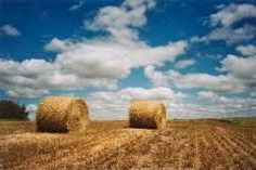pictures of saskatchewan countryside - Google Search