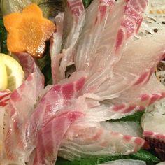 Sashimi of isaki