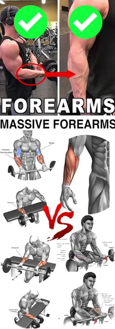 MASSIVE FOREARMS ✅ Your forearms don't get the respect they deserve Not only do thicker, fuller forearms give you a more aesthetically imposing look, but they increase your strength capacity in exercises like the deadlift Your upper body will - # Bodybuilding Training, Bodybuilding Workouts, Planet Fitness Workout, Muscle Fitness, Yoga Fitness, Health Fitness, Forearm Workout, Biceps Workout, Forearm Training