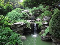Nyc waterfalls - pic is Brooklyn botanical garden Japanese garden