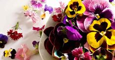 Edible Flowers Are the New Juicing Craze #purewow