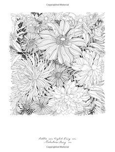 Floribunda: A Flower Coloring Book: Leila Duly: 9781780677682: Amazon.com: Books